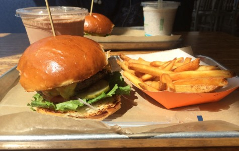 The Quest for the Best Burger: Burger Tap & Shake