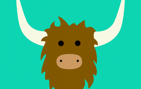 What's All the yak about Yik Yak?