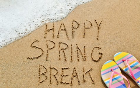 Places To Visit and Things To Do During Spring Break