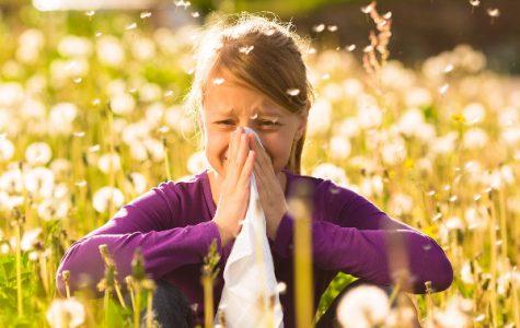 Allergy Season Has Finally Arrived