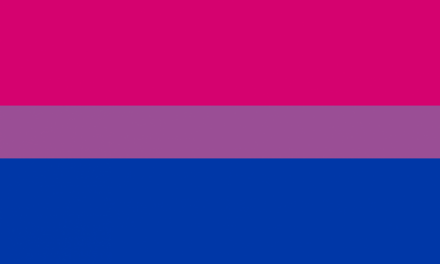 Bisexual+Flag
