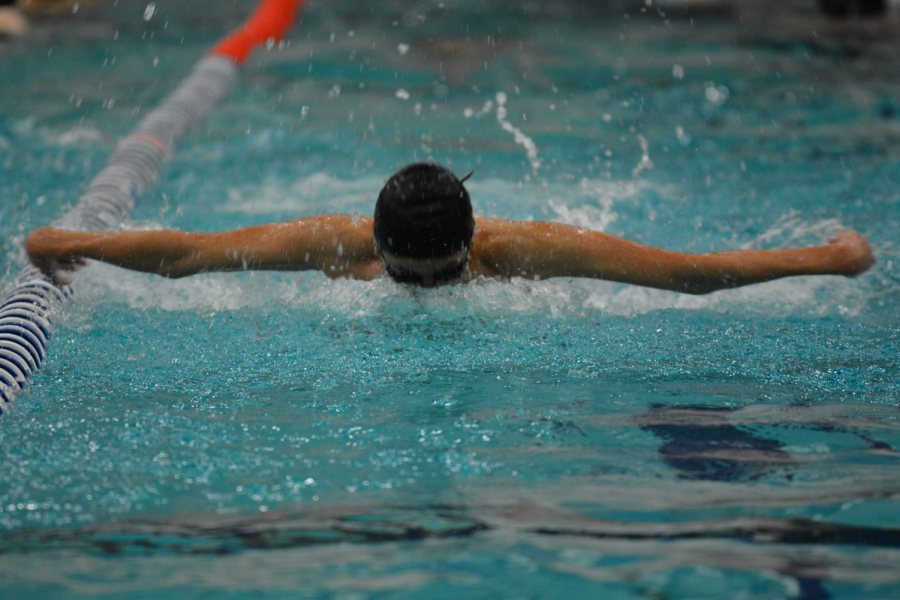 Roosevelt+swimmer+swimming+butterfly+at+a+meet.